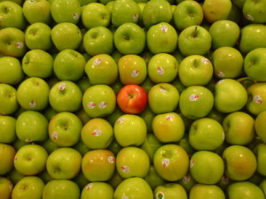 out of preference apple